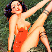 Field of Dremas Marijuana Pin-Up Girl T Shirt